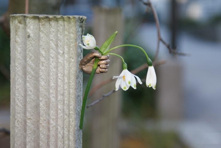 Инсталляция Ornamental Thoughtfulness в Новой Зеландии