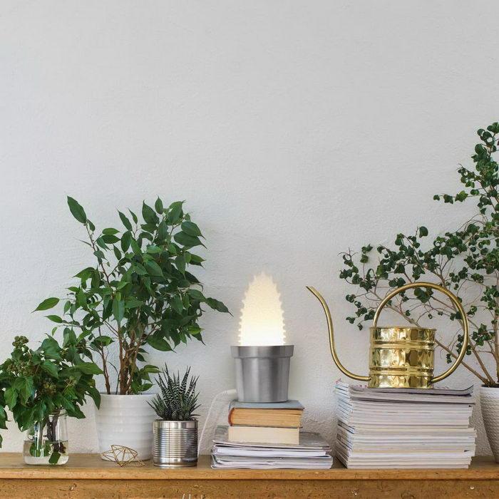 Лампы-кактусы дизайнера Chen Bikovski