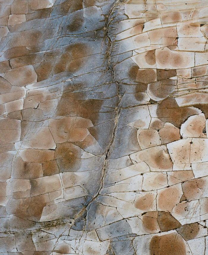 Паттерны северной Калифорнии James Watts