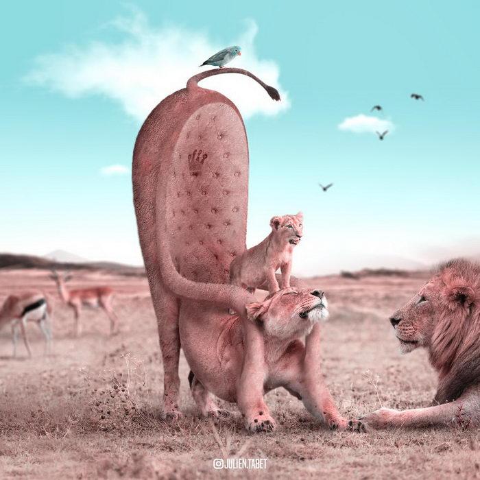 Дикие коллажи с животными Julien Tabet