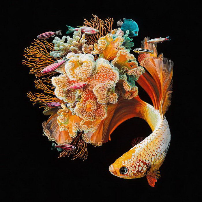 Картины Lisa Ericson, посвященные рыбам