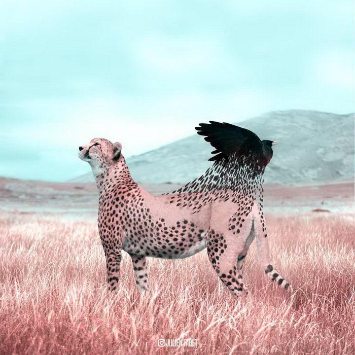 Фантастические твари: яркие работы Julien Tabet