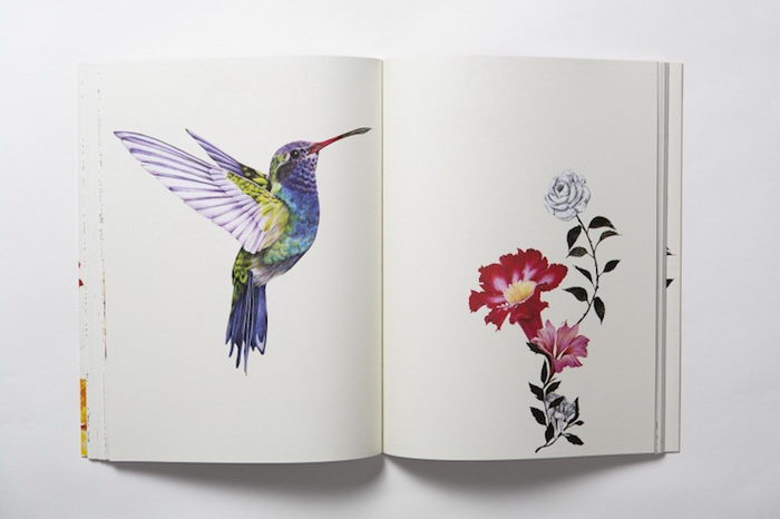 Раскраска для взрослых с птицами и цветами: книга Daisy Fletcher