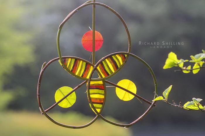 Природный арт Richard Shilling