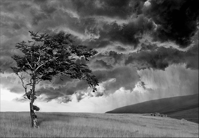 Природа на фото Cornel Pufan