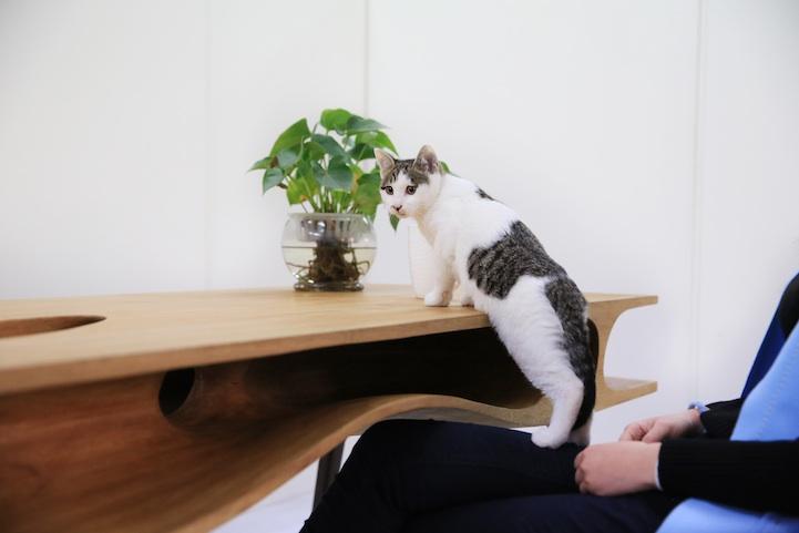 Стол для работы с котами