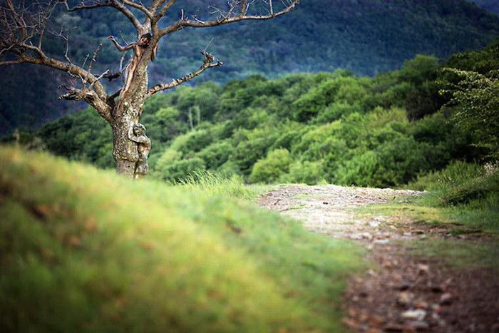 Люди, спрятанные среди природы