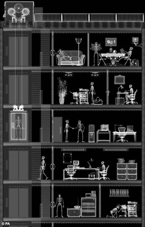 Мир в рентгеновском аппарате