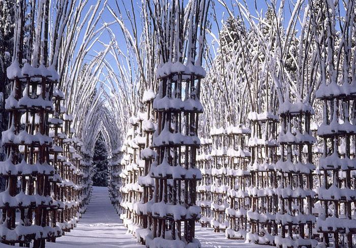 Кафедральный собор из дерева