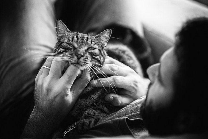 Мужчины и коты в фотографиях Sabrina Boem