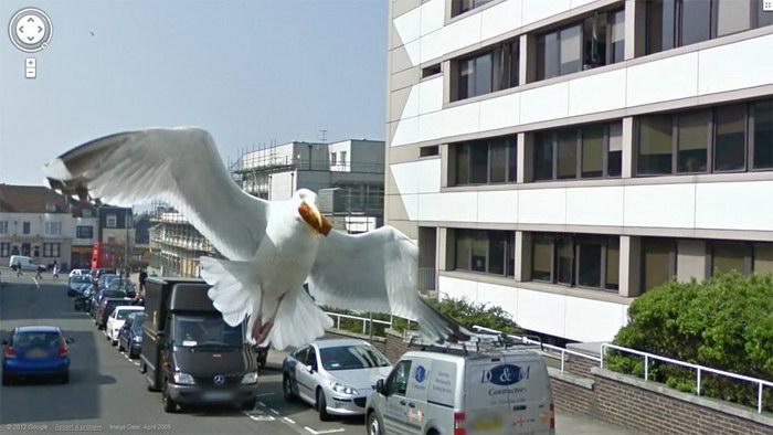Странные снимки Google Street View