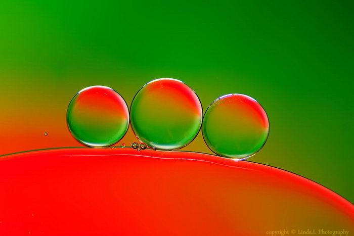 Макро-капли на ярком фоне: фотографии Linda Biba