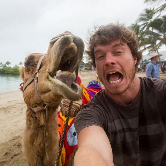 Мастер селфи с животными: фотограф Allan Dixon