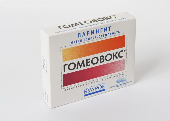 homeovox.ru