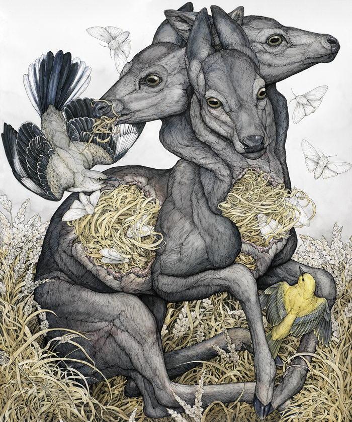 Природные картины Lauren Marx