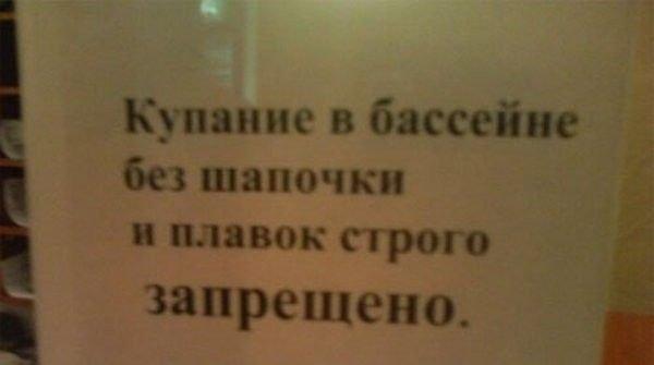 приколы написанные: