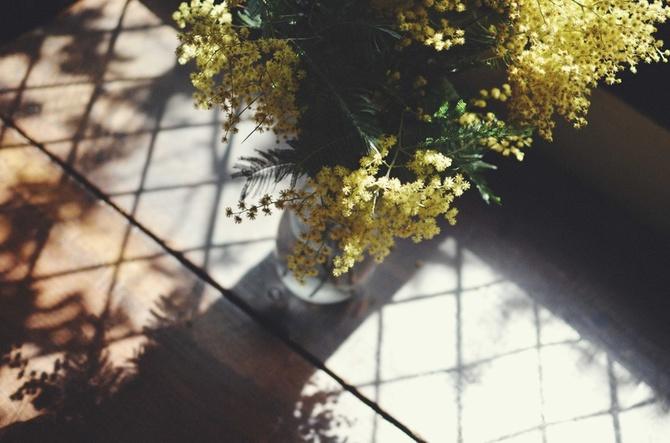 Фотографии Cris Romagosa