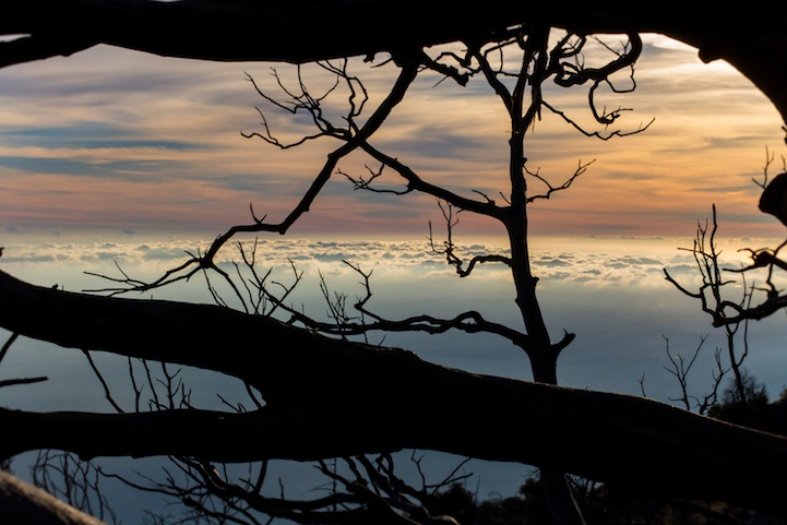 Красивые закаты Shane Hawk