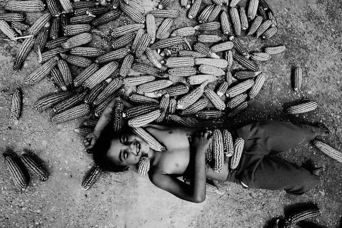 Портреты румынского мальчика Felicia Simion