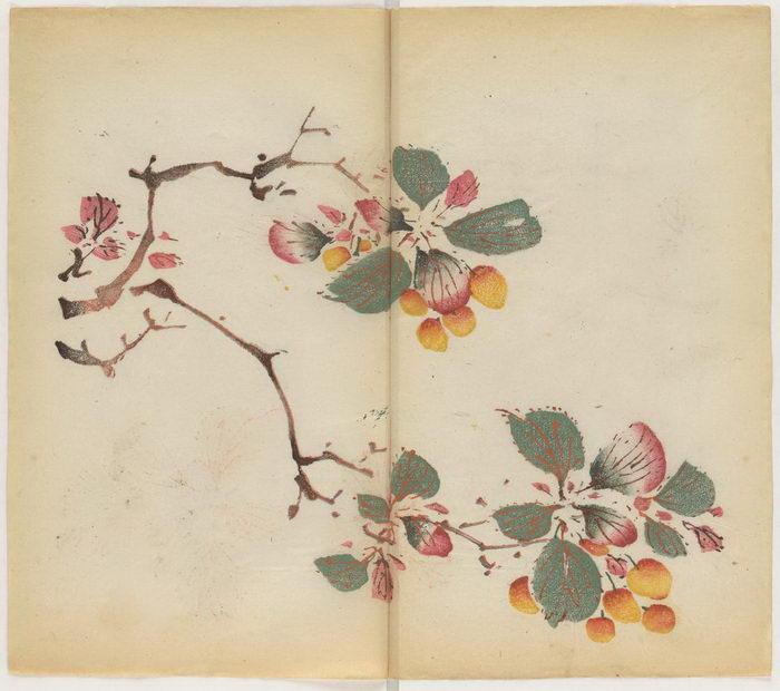 Как выглядит самая старая цветная напечатанная книга в мире
