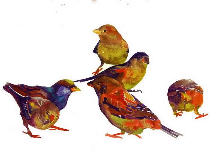 Акварельные птицы Maja Wrońska