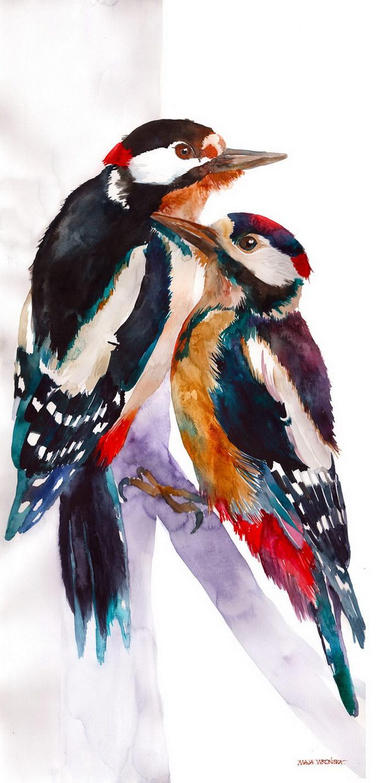Акварельные птицы Maja Wronska