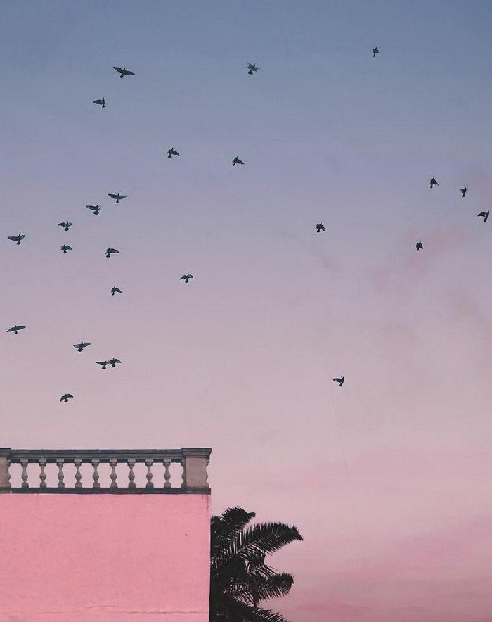 Минималистические фотографии лета Andria Darius Pancrazi