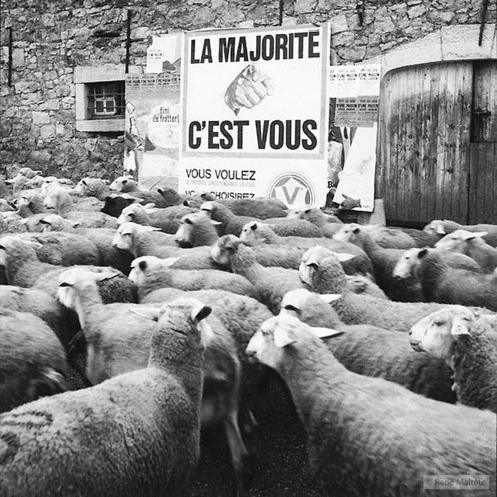 Стрит-фотография René Maltête