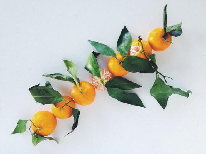 Красота и гармония повседневной еды Anne Calista
