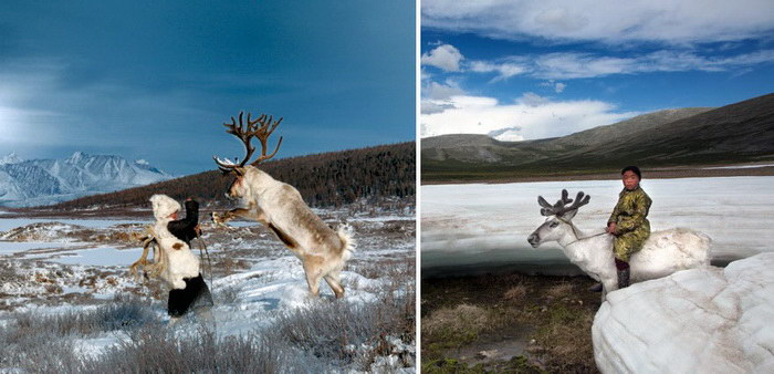 Оленеводы из Монголии в фотографиях Hamid Sardar-Afkhami