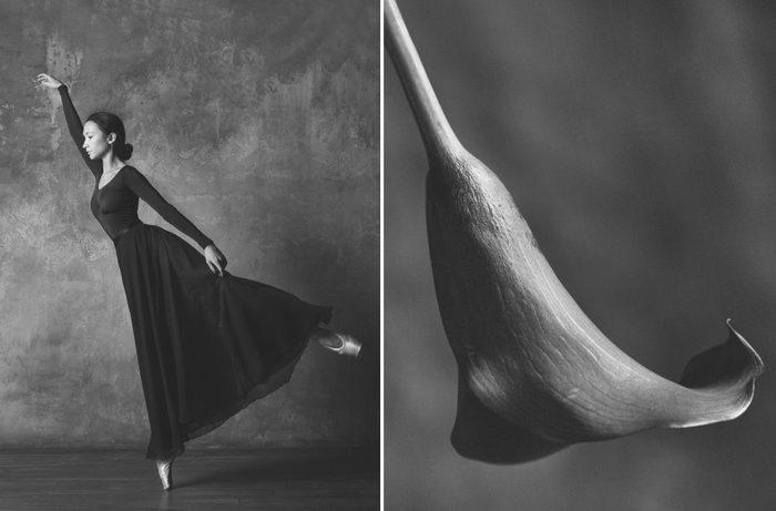 Балерины и цветы: проект Юлии Артемьевой