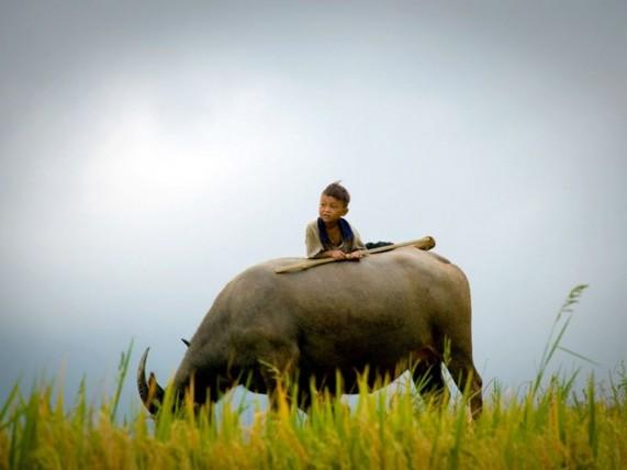 Лучшие фотографии от National Geographic Channel