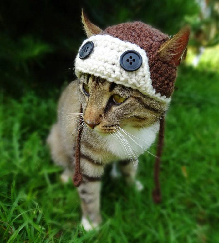 Вязаные шляпки для животных Meredith Langley