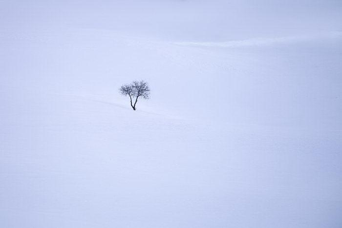 Красота Альп в фотографиях Roberto Bertero