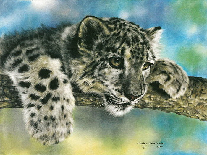Животные в картинах Lesley Harrison