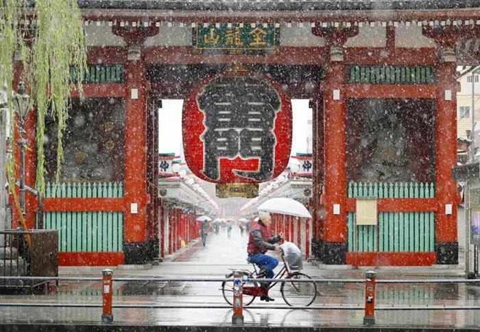 Первый за 50 лет снег в ноябрьском Токио