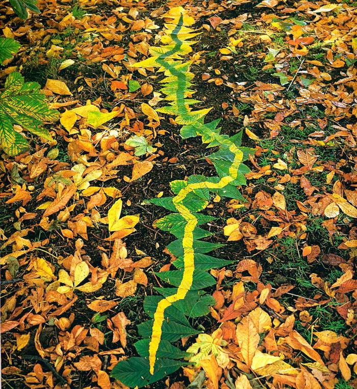 Природный арт Andy Goldsworthy