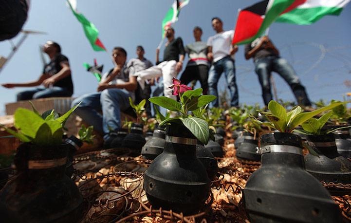 Сад памяти в Палестине
