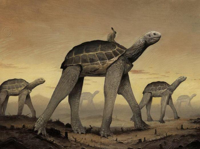 Флора и фауна в виде хозяев мира: проект Bill Mayer