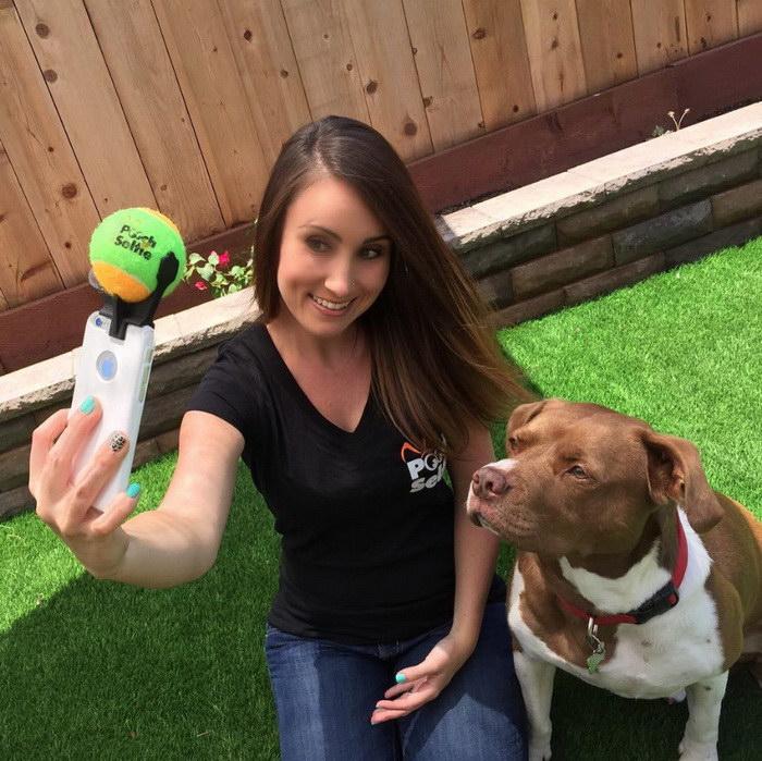 Как заставить собаку позировать на фото? Ответ найден!