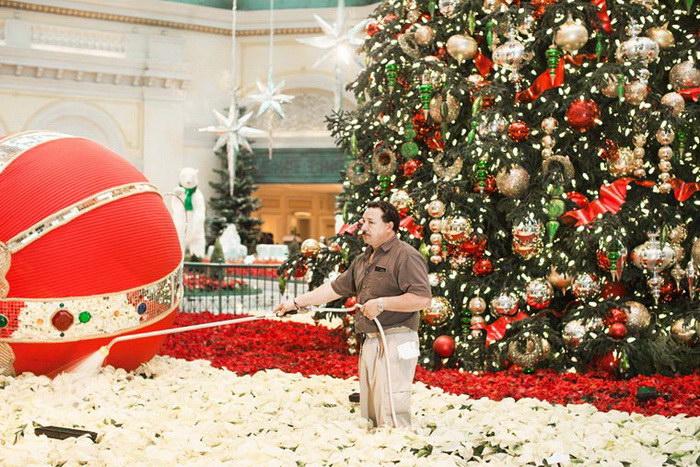Другая сторона Рождества в фотографиях Jesse Rieser