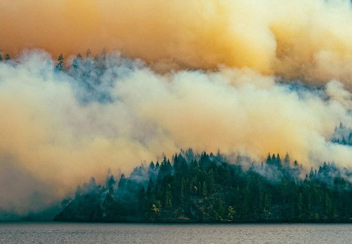 Пожар в лесу в фотографиях Owen Perry