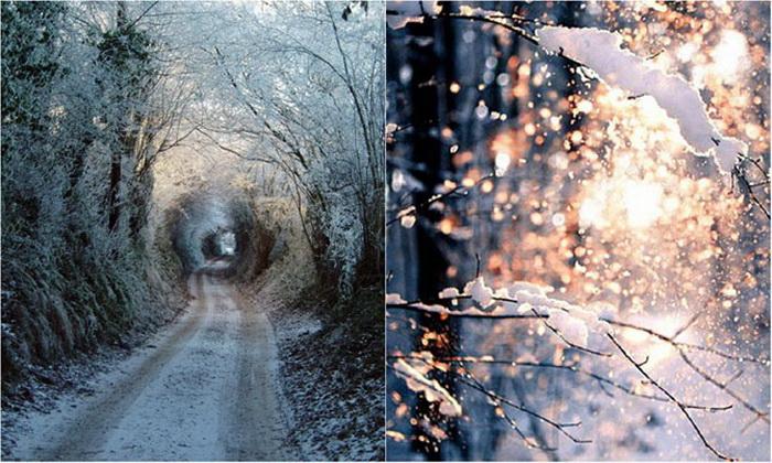 Новогодние фотографии со всего мира