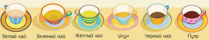 9 вещей, которые нужно узнать о чае