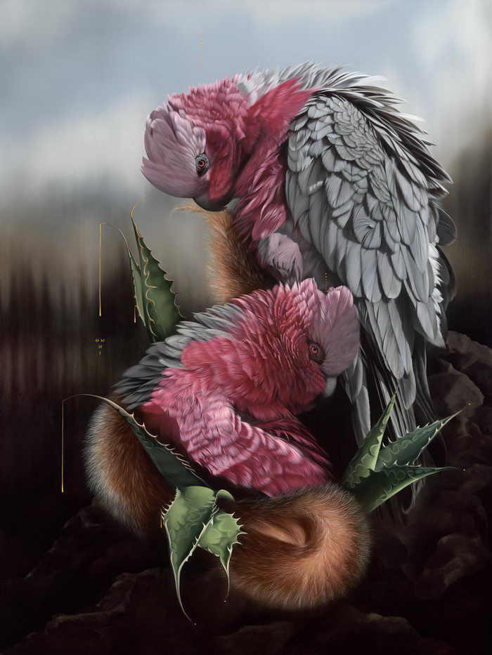 Красивые птицы в картинах Josie Morway