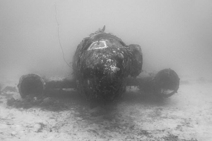 Потонувшие самолеты в фотографиях Brandi Mueller