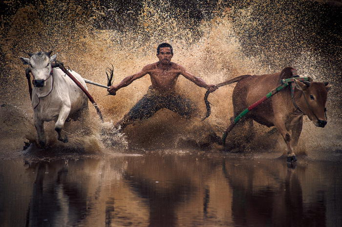 Душевные фотографии Mohd Irman Ismail